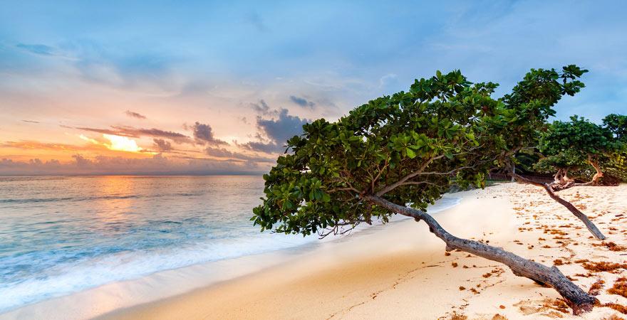 Der Strand auf der Bacardi-Insel ist einfach traumhaft