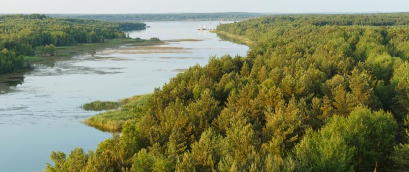 Senftenbergersee