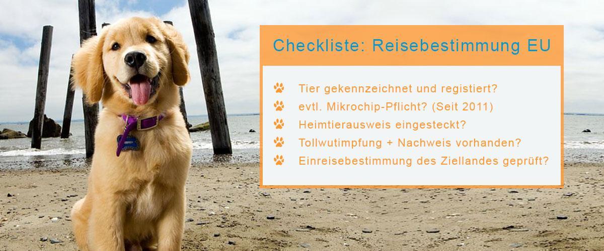 Urlaub mit Hund Check Liste
