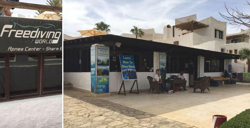 Tauchschule im LABRANDA Tower Bay Sharm el Sheikh