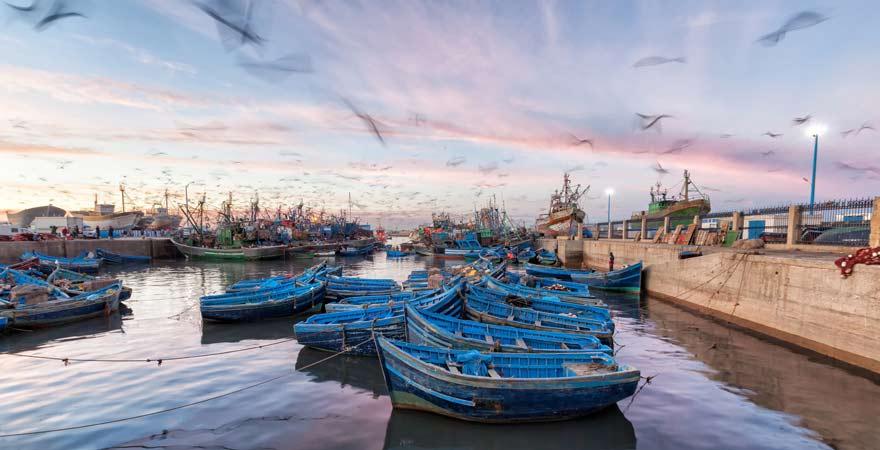 Fischerboote vor Essaouira, Marokko