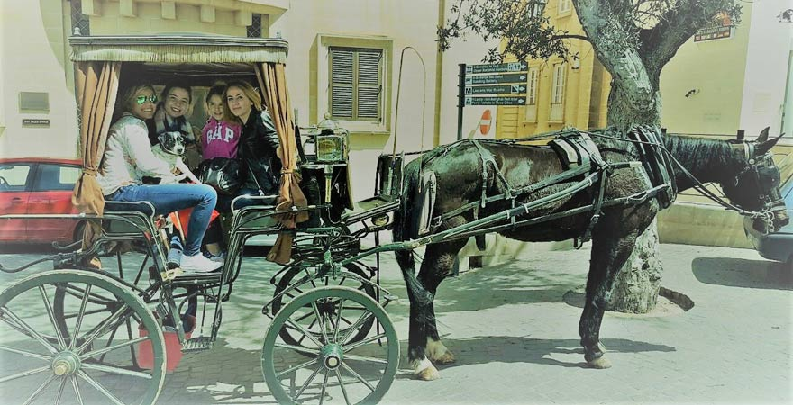 Horse cab Tour in Valletta
