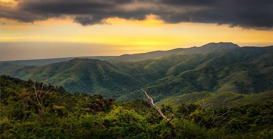 Unser Kuba-Reisetipp: Macht unbedingt einen Nationalpark Topes de Collantes