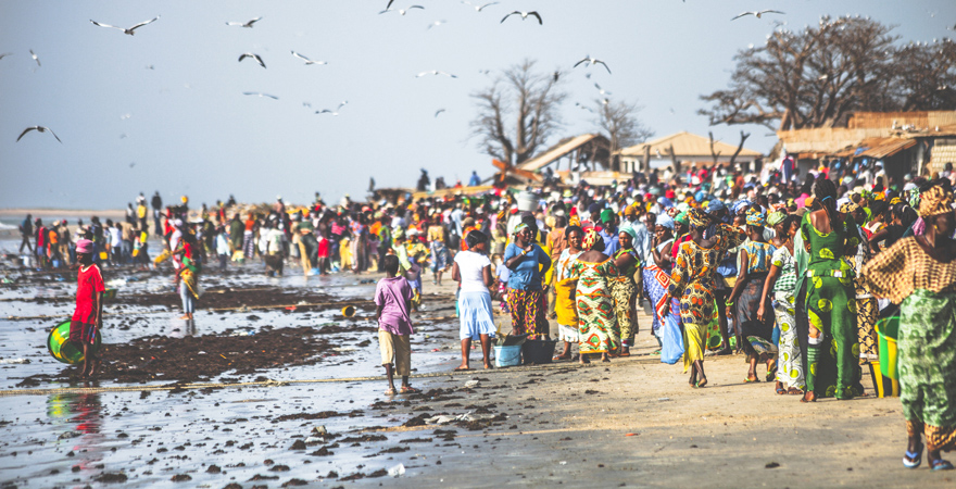 Der Tanji-Fischmarkt zählt zu den Hauptattraktionen im Gambia-Urlaub