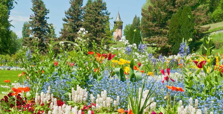 Blumeninsel Mainau im Bodensee