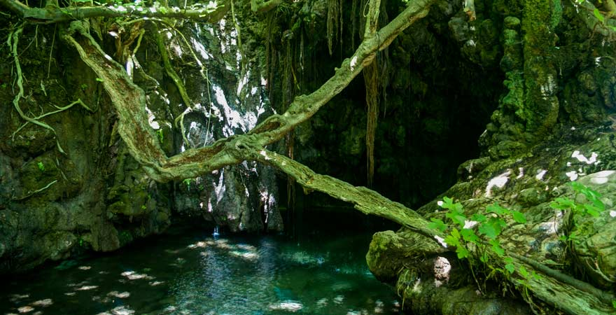 """Ein Reisetipp für Entdecker: Das """"Bad der Aphrodite"""" auf Akamas, Zypern"""