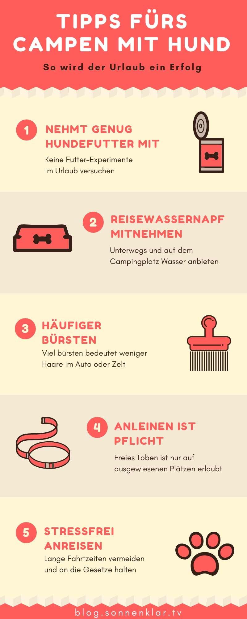 Infografik Tipps Camping mit Hund