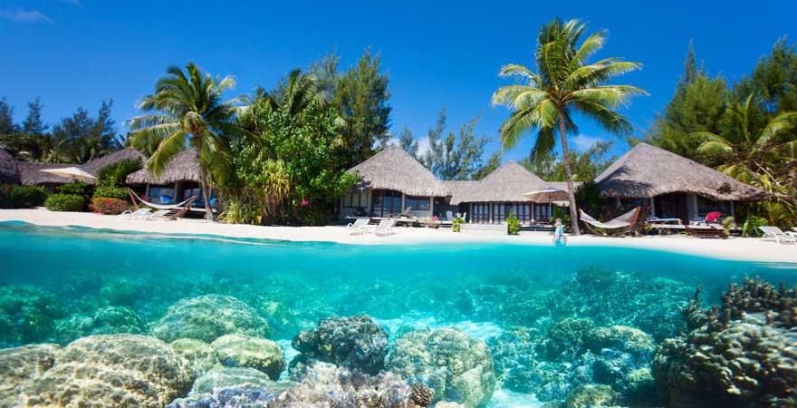 Korallen vor dem Bora-Bora-Atoll, Malediven