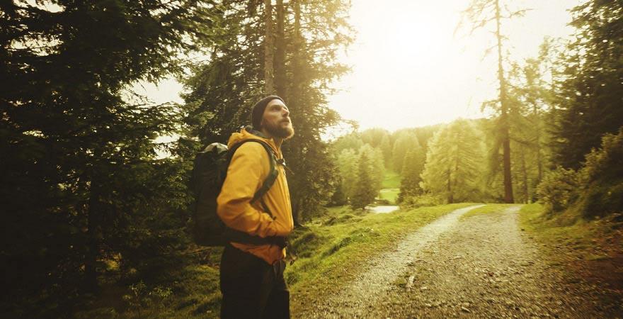 Eine Waldwanderung ist gut im Rahmen einer Kneippkur