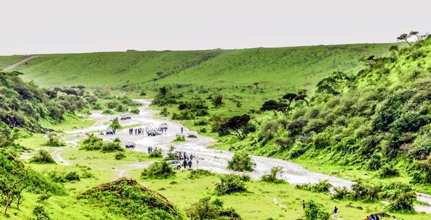 Grüne Landschaft bei Salalah nach Charif