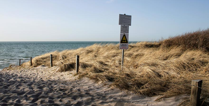 Die Vorpommersche Boddenlandschaft ist ein schönes Ausflugziel für jeden Ostsee-Urlauber