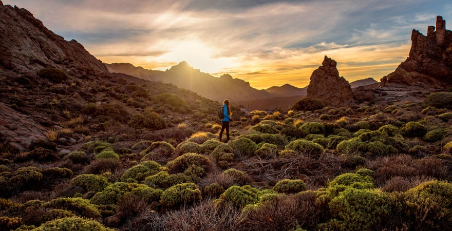 Teide Nationalpark, Teneriffa