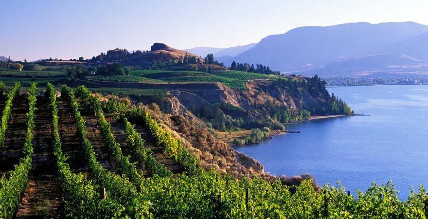 Landschaft vom Okanagan Valley