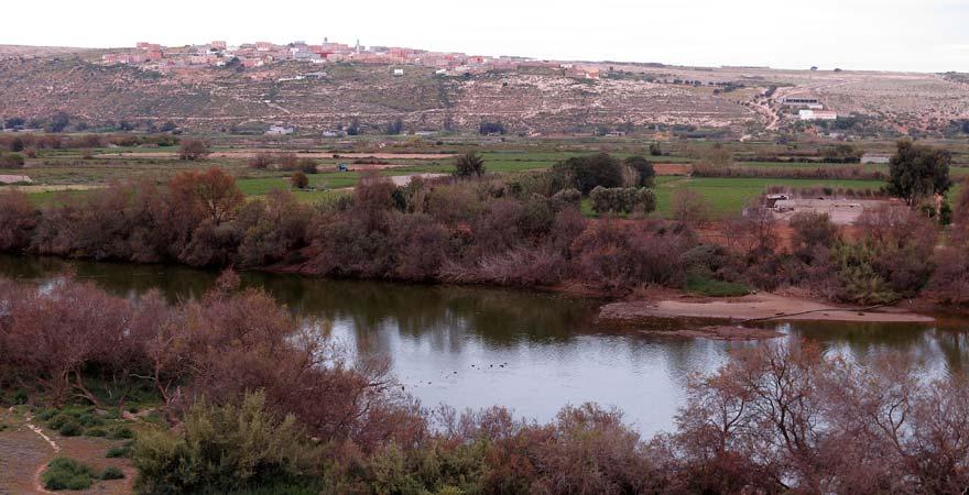 Sous Massa Nationalpark in Marokko