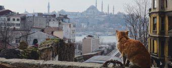 Türkei Tipps