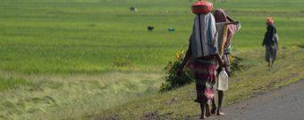 Gründe für Urlaub in Äthiopien