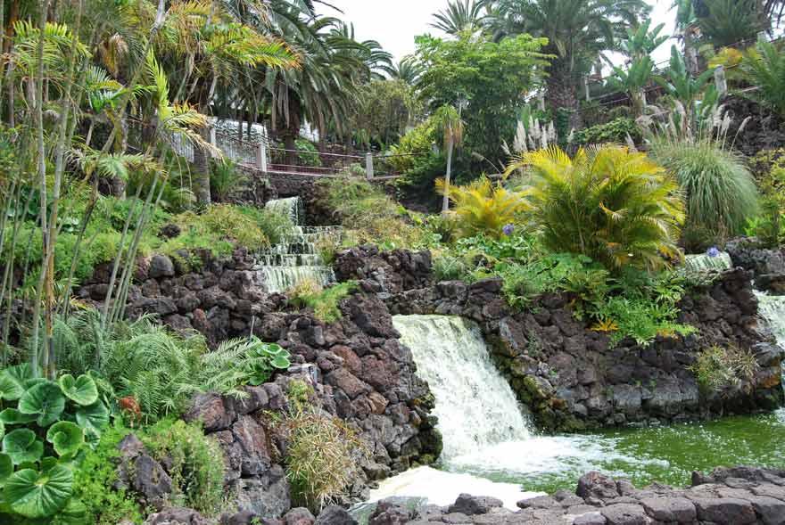 Botanischer Garten von Puerto de la Cruz auf Teneriffa - eine der besten Sehenswürdigkeiten der Insel