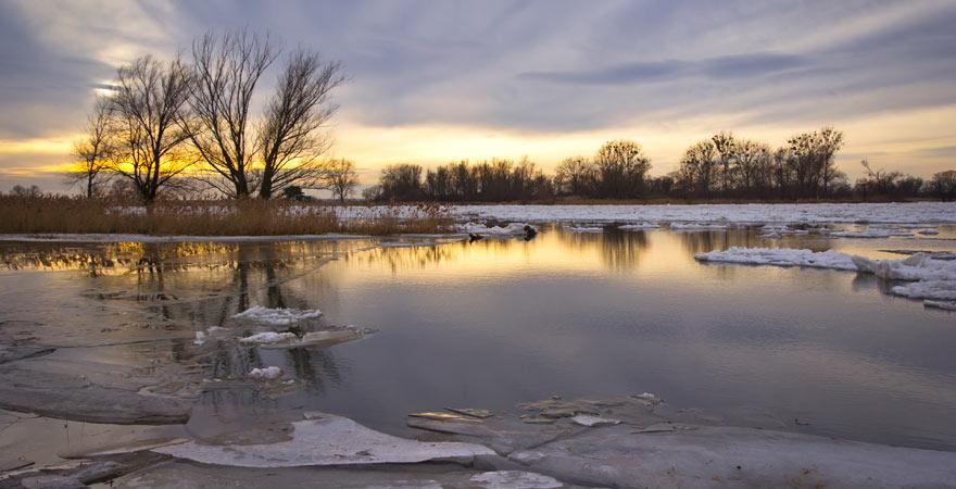 Überflutete Bereiche im Nationalpark Unteres Odertal