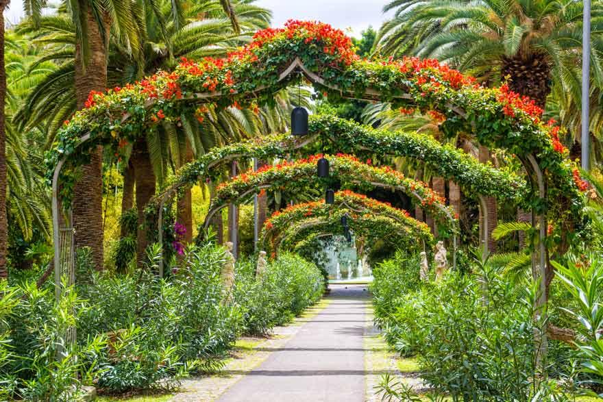 Der Parque Garcia Sanabria ist so eine schöne Sehenswürdigkeit auf Teneriffa ist auf jeden Fall einen Besuch wert