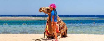 Ägypten mit Kindern