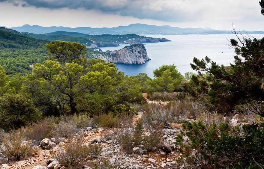 Landschaft auf Ibiza