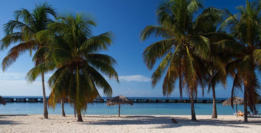 Am Playa Giron genießt ihr Kubas intakte Natur in vollen Zügen
