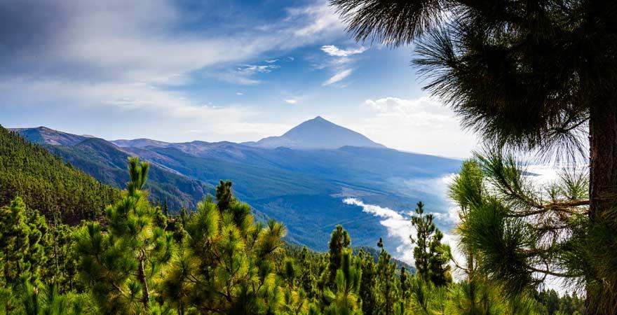 Wandern auf den Pico del Teide