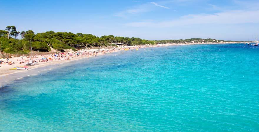 Der Platja de Ses Salines ist ein schöner und weitläufiger Strand auf Ibiza