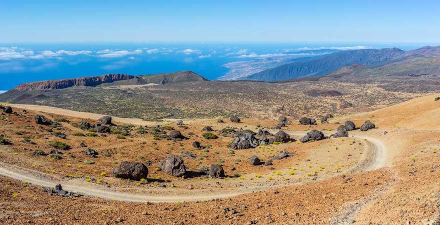 Teide-Eier begegnen euch beim Wandern auf den Pico del Teide auf Teneriffa