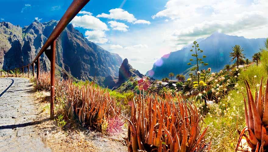 Die Wanderung durch die Masca-Schhlucht gehört zu den schönsten auf Teneriffa