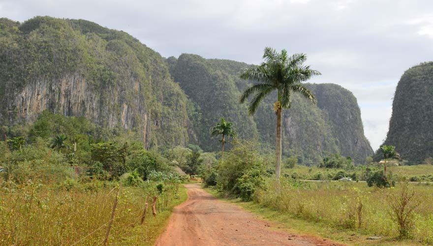 Vinales gehört zu den Tipps für eine Kuba-Rundreise, da die Region bekannt für ihren Tabakanbau ist