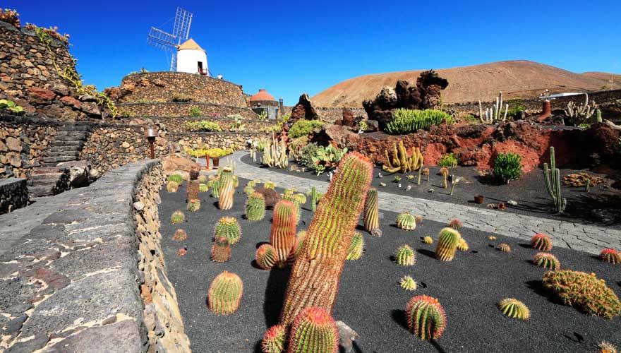 Eine Sehenswürdigkeiten von Cesar Manrique auf Lanzarote: Jardin de Cactus