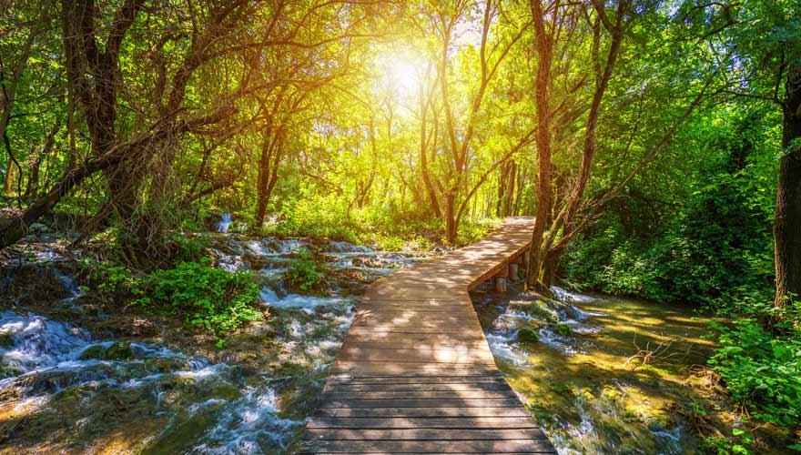 Wanderweg in den Plitvicer Seen