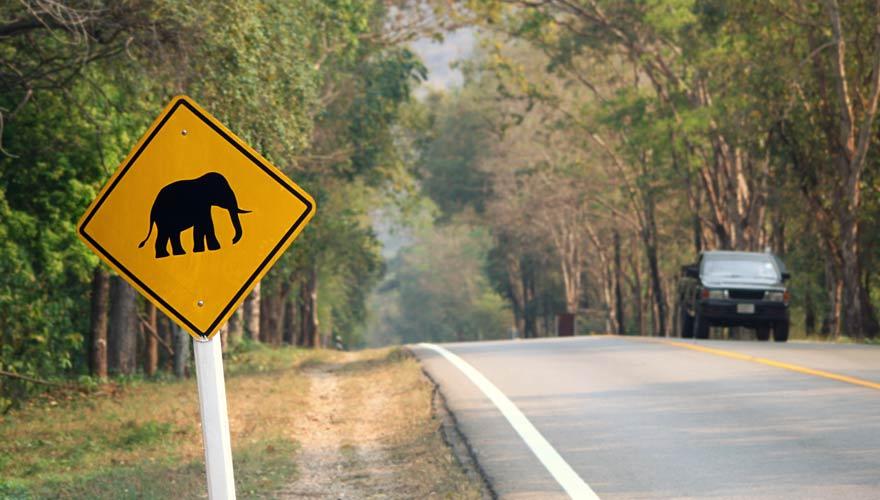 Anfahrt zum Erawan Nationalpark