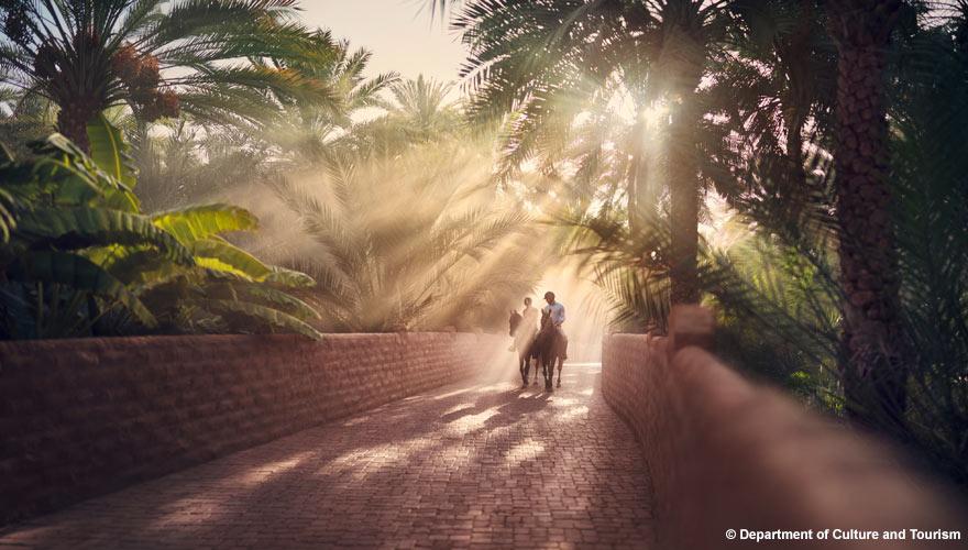 Ausritt in der Al Ain Oase in Abu Dhabi - ein toller Ausflug