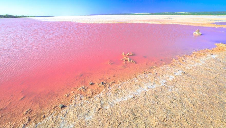 Die Hutt Lagoon ist mit dem Pink Lake in Australien ein außergewöhnlicher Ort