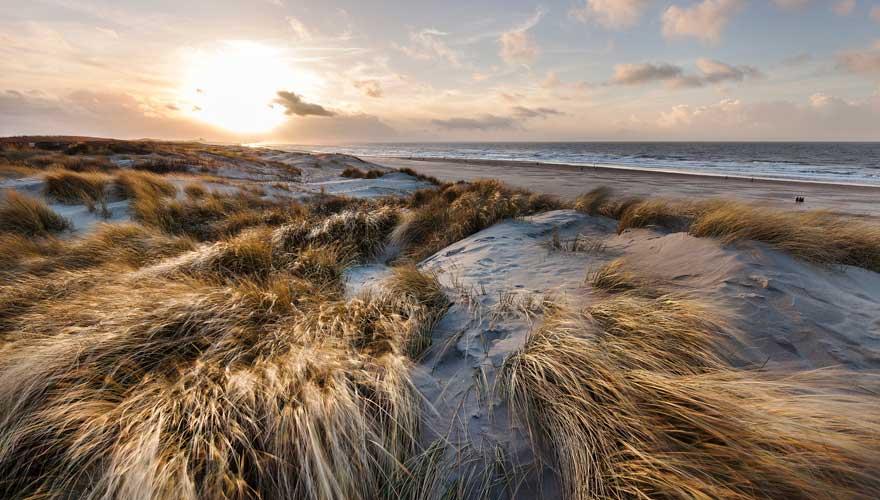 Goldene Dünen von Scheveningen in den Niederlanden