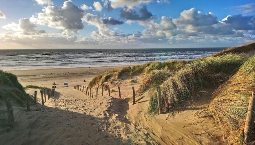 Dünen und Strand von Bloemendaal in den Niederlanden