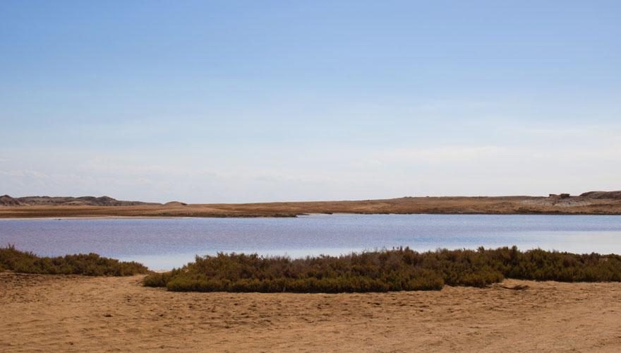 Salzsee im Ras Mohammed Nationalpark