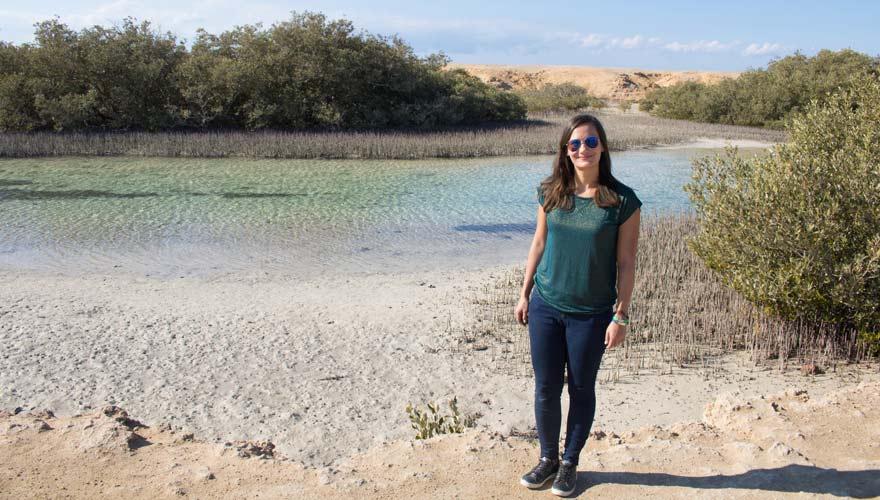Mangrovenwald im Ras Mohammed Nationalpark