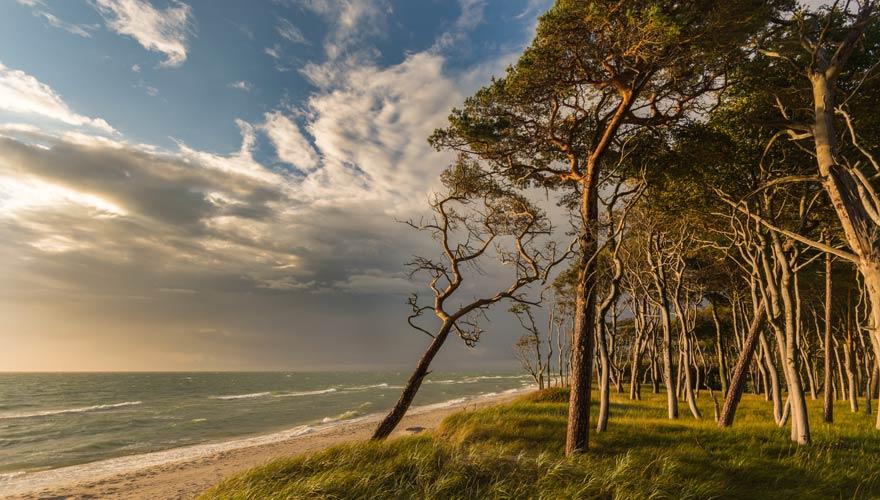 Strand von Ahrenshoop bei Prerow an der Ostsee