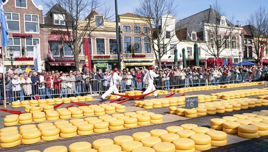 Käsemarkt in Alkmar