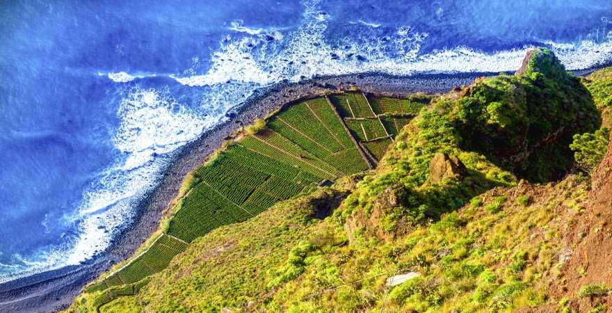 Blick auf Felder am Meer vom Cabo Girao auf Madeira