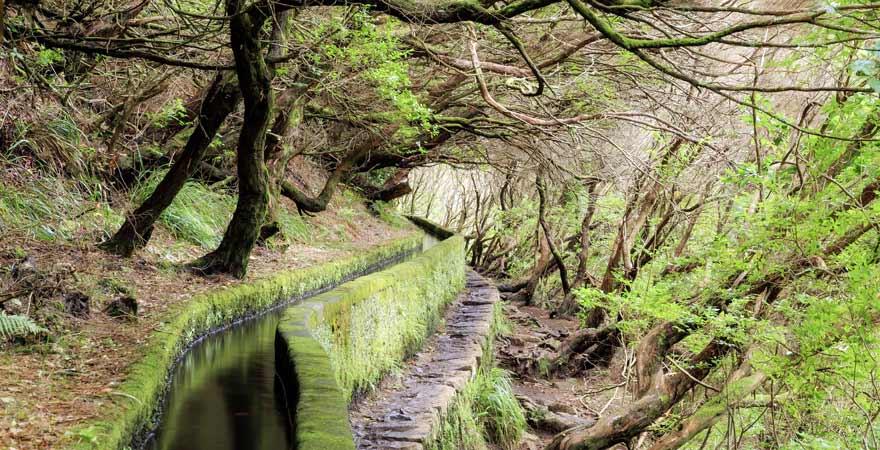 Madeira Wanderweg 25 Fontes in Portugal
