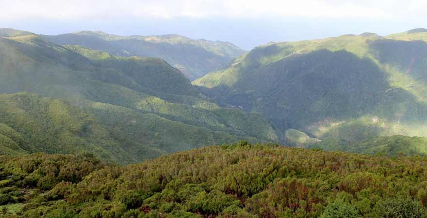 Paul de Serra auf Madeira