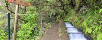 Wandern auf Madeira in Portugal