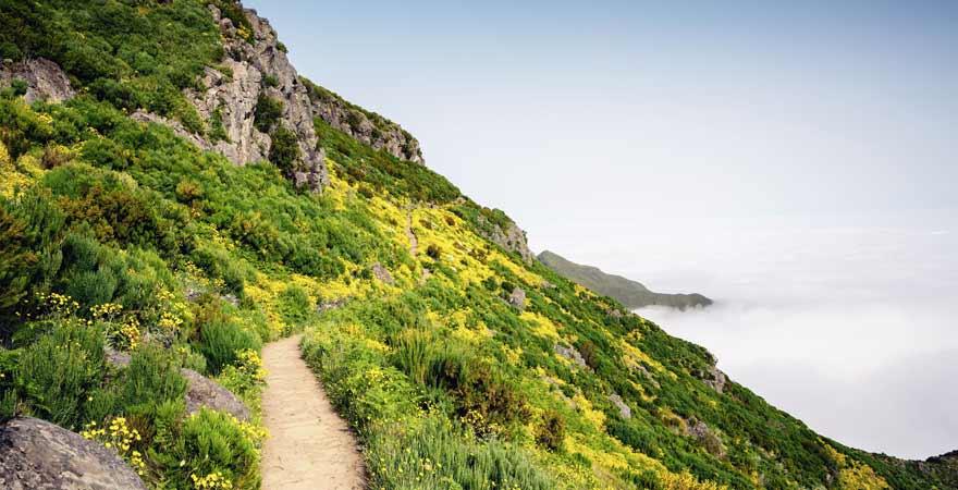 Wanderweg zum Pico Ruivo auf Madeira