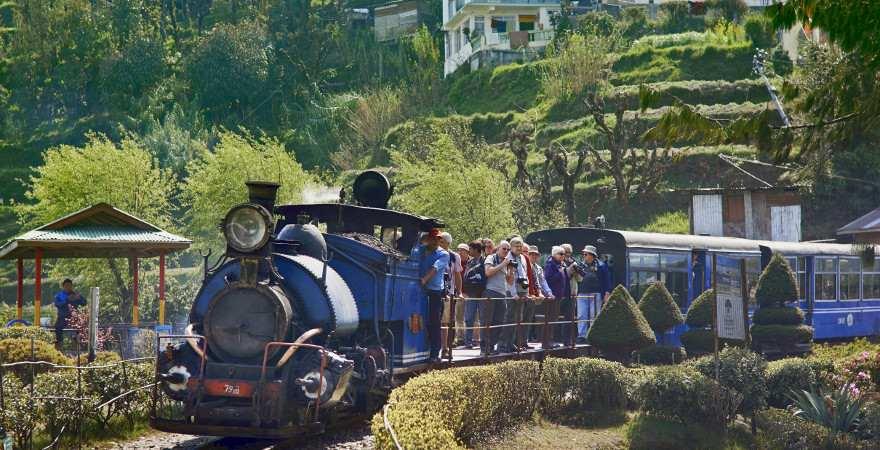 Eine Dampflok zieht den historischen Zug durch Darjeeling