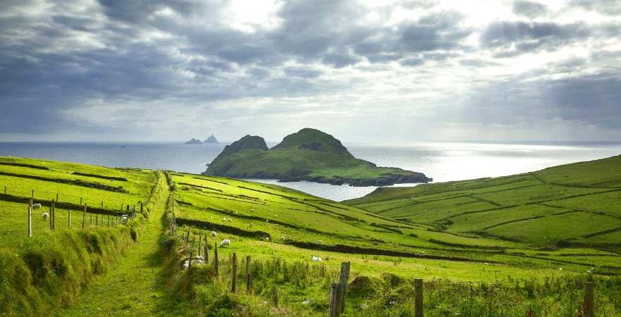 Blick über grüne Wiesen in Irland zum Meer