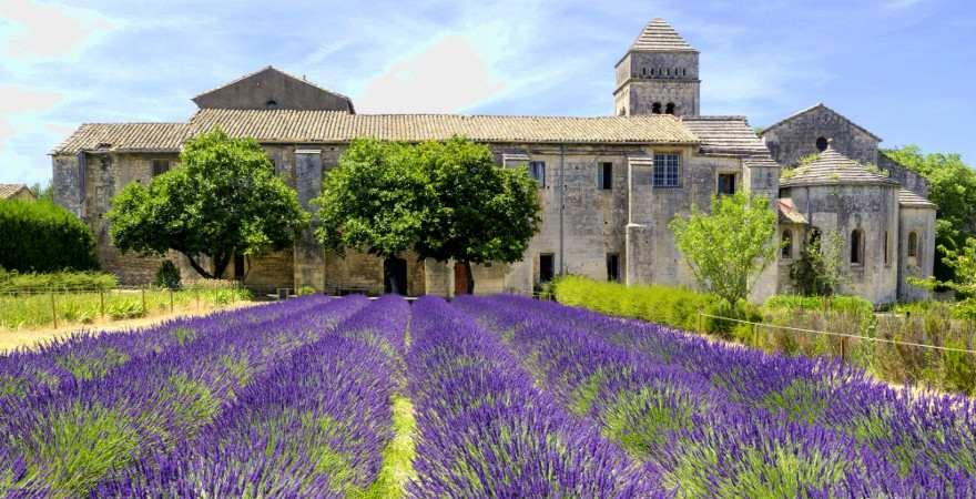 Blühendes Lavendelfeld vor einem Kloster